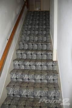 Old carpet on stairs - before