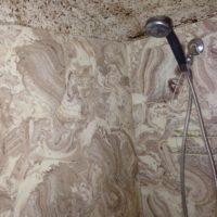Previous shower surround-YUCK